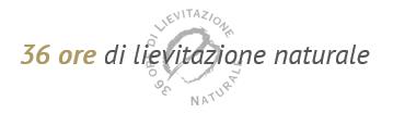 36 stunden Gährung Panettone Fiasconaro
